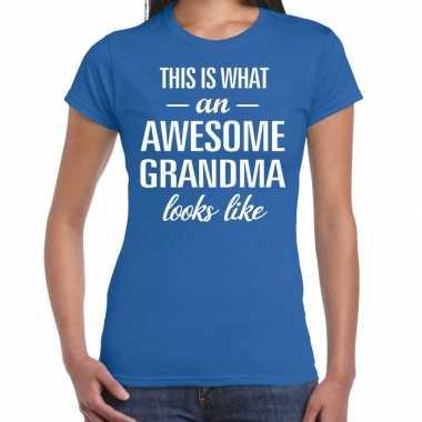 Awesome grandma / oma cadeau t-shirt blauw dames