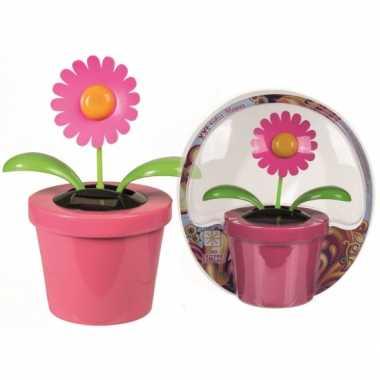 Dansende bloem in roze bloempot