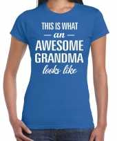 Awesome grandma oma cadeau t shirt blauw dames