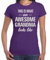 Awesome grandma oma cadeau t shirt paars dames