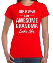 Awesome grandma oma cadeau t shirt rood dames